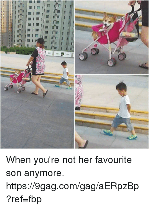 9gag, Dank, and 🤖: When you're not her favourite son anymore. https://9gag.com/gag/aERpzBp?ref=fbp