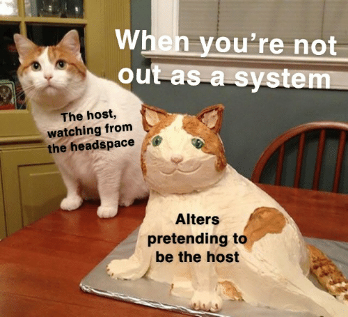 Not Out: When you're not  out as a system  The host,  watching from  the headspace  Alters  pretending to  be the host