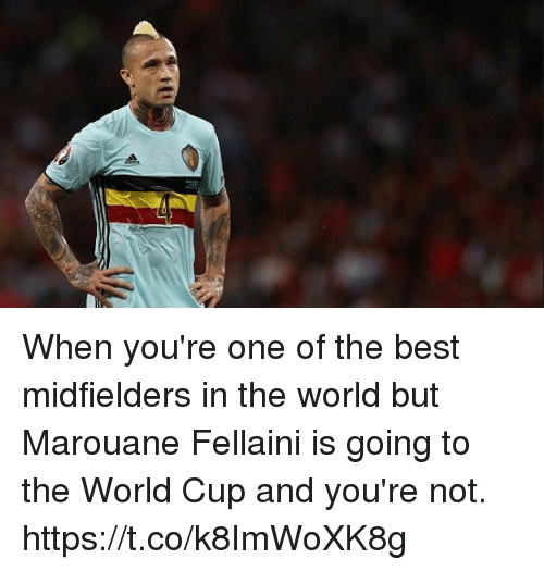 fellaini: When you're one of the best midfielders in the world but Marouane Fellaini is going to the World Cup and you're not. https://t.co/k8ImWoXK8g