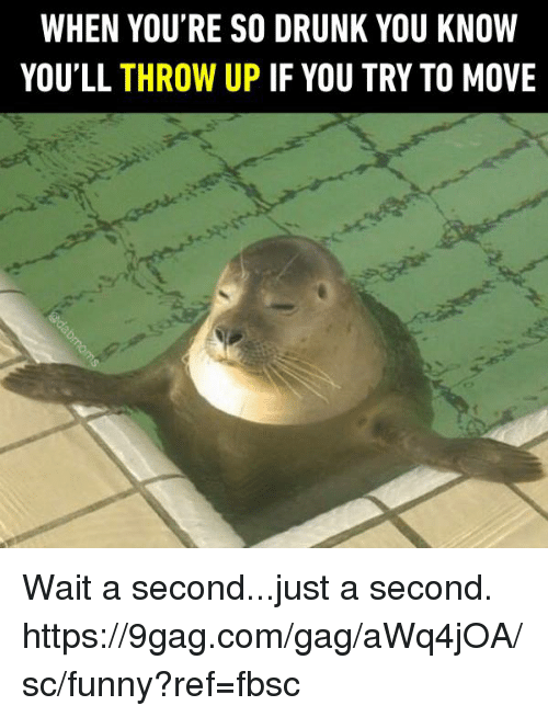 Drunked: WHEN YOU'RE SO DRUNK YOU KNOW  YOU'LL THROW UP IF YOU TRY TO MOVE Wait a second...just a second. https://9gag.com/gag/aWq4jOA/sc/funny?ref=fbsc