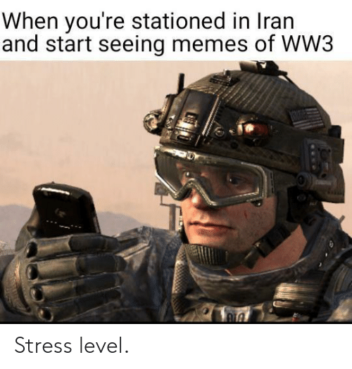 Memes Of: When you're stationed in Iran  and start seeing memes of WW3  1306 Stress level.