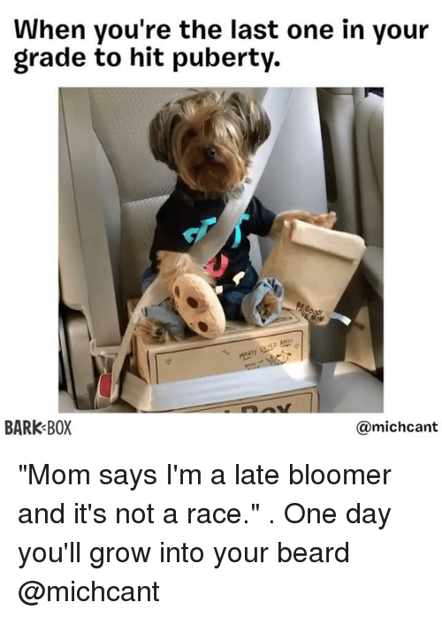 """aed: When you're the last one in your  grade to hit puberty.  AED AND  BARK BOX  michcant """"Mom says I'm a late bloomer and it's not a race."""" . One day you'll grow into your beard @michcant"""
