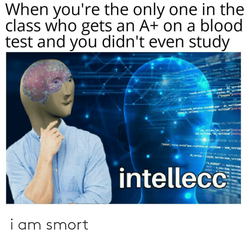 Test: When you're the only one in the  class who gets an A+ on a blood  test and you didn't even study  के  *nie de omia.be emia  wit  intellecc  WEIN i am smort
