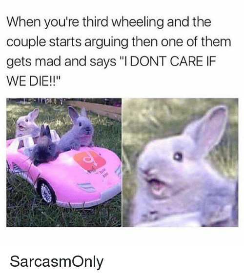 """Wheeling: When you're third wheeling and the  couple starts arguing then one of them  gets mad and says """"IDONT CARE IF  WE DIE!!"""" SarcasmOnly"""