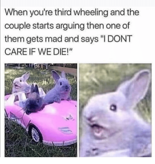 """Wheeling: When you're third wheeling and the  couple starts arguing then one of  them gets mad and says """"I DONT  CARE IF WE DIE!"""""""