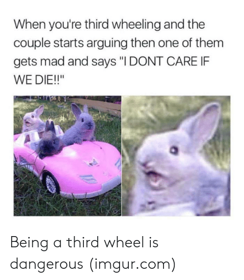"""Wheeling: When you're third wheeling and the  couple starts arguing then one of them  gets mad and says """"I DONT CARE IF  WE DIE!!"""" Being a third wheel is dangerous (imgur.com)"""