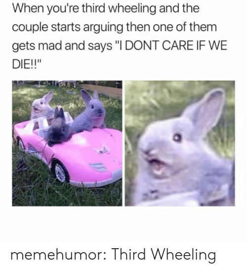 """Wheeling: When you're third wheeling and the  couple starts arguing then one of them  gets mad and says """"I DONT CARE IF WE  DIE!!"""" memehumor:  Third Wheeling"""