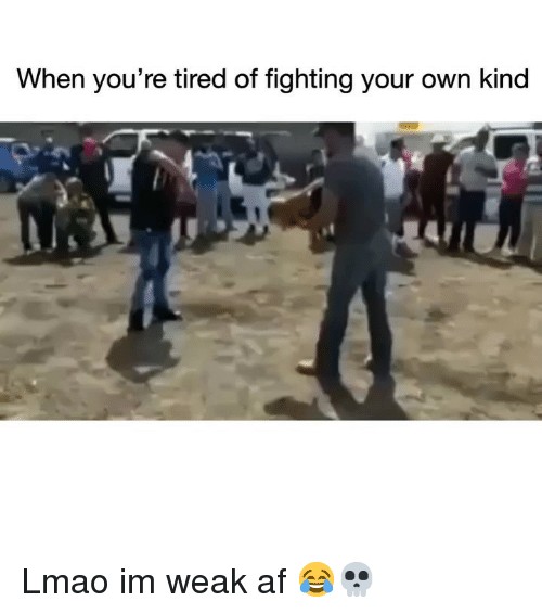 Af, Funny, and Lmao: When you're tired of fighting your own kind Lmao im weak af 😂💀