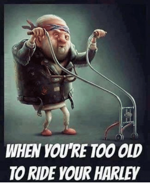 when youre too old to ride your harley 14294606 🇲🇽 25 best memes about harley harley memes