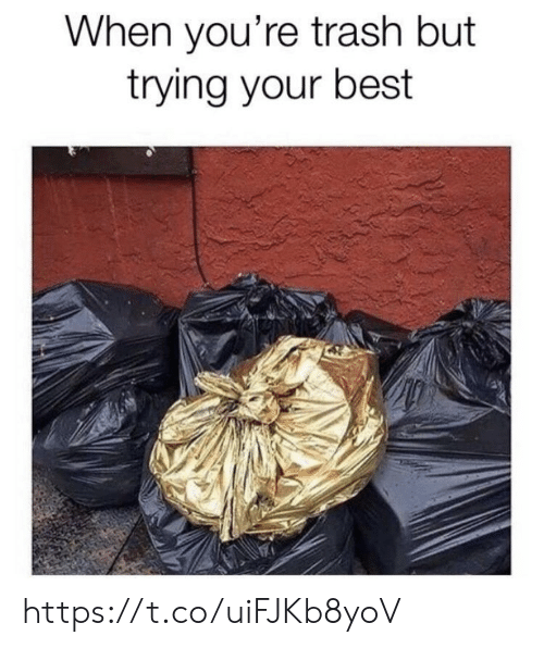 Memes, Trash, and Best: When you're trash but  trying your best https://t.co/uiFJKb8yoV