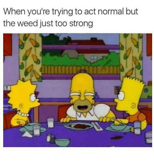 Memes, Weed, and Strong: When you're trying to act normal but  the weed just too strong