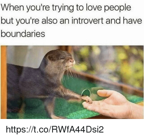 an introvert: When you're trying to love people  but you're also an introvert and have  boundaries https://t.co/RWfA44Dsi2