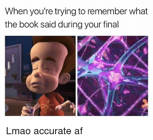 Af, Funny, and Lmao: When you're trying to remember what  the book said during your final Lmao accurate af