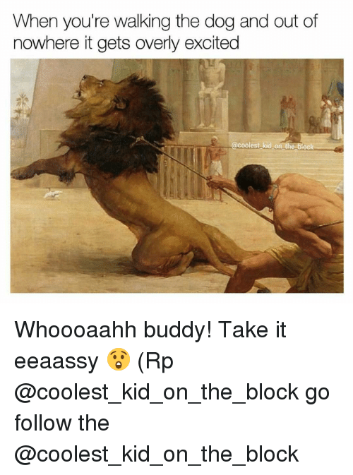 Excitment: When you're walking the dog and out of  nowhere itgets overly excited  coolest kid on t  block Whoooaahh buddy! Take it eeaassy 😲 (Rp @coolest_kid_on_the_block go follow the @coolest_kid_on_the_block
