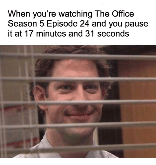 The Office, Office, and You: When you're watching The Office  Season 5 Episode 24 and you pause  it at 17 minutes and 31 seconds