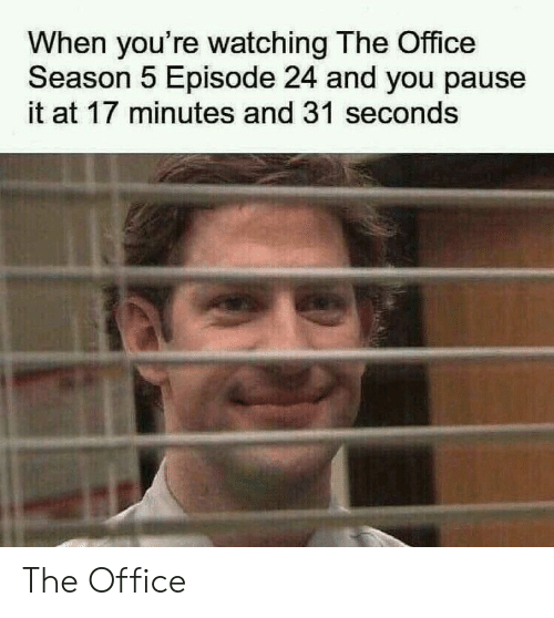 The Office, Office, and You: When you're watching The Office  Season 5 Episode 24 and you pause  it at 17 minutes and 31 seconds The Office