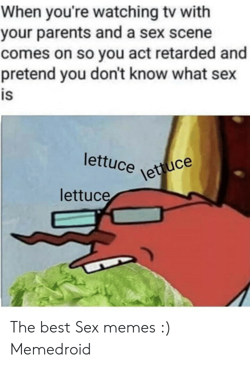 Best Sex Memes: When you're watching tv with  your parents and a sex scene  comes on so you act retarded and  pretend you don't know what sex  is  lettuce e  lettuce  lettuce The best Sex memes :) Memedroid
