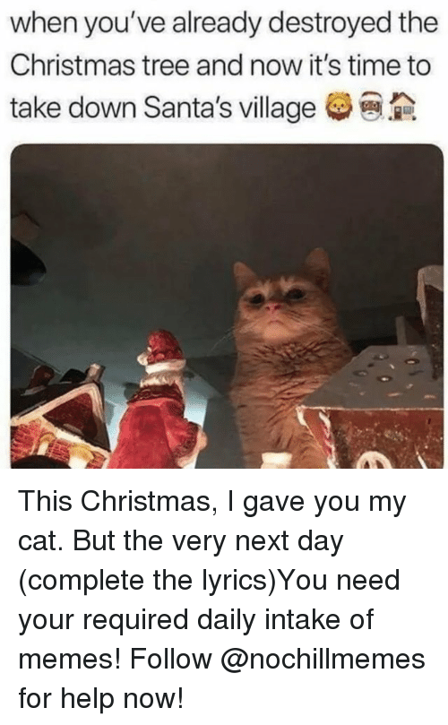 this christmas: when you've already destroyed the  Christmas tree and now it's time to  take down Santa's village This Christmas, I gave you my cat. But the very next day (complete the lyrics)You need your required daily intake of memes! Follow @nochillmemes for help now!