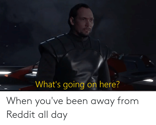 reddit all: When you've been away from Reddit all day