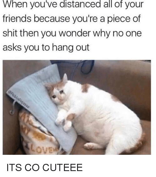 Piece Of Shits: When you've distanced all of your  friends because you're a piece of  shit then you wonder why no one  asks you to hang out ITS CO CUTEEE