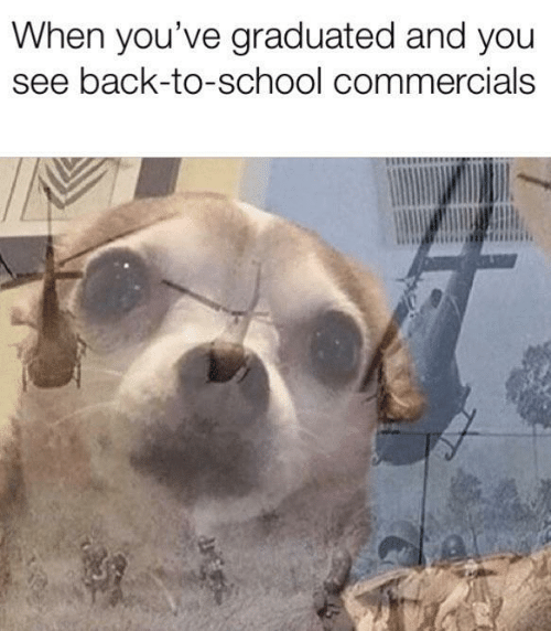School, Back, and Back to School: When you've graduated and you  see back-to-school commercials