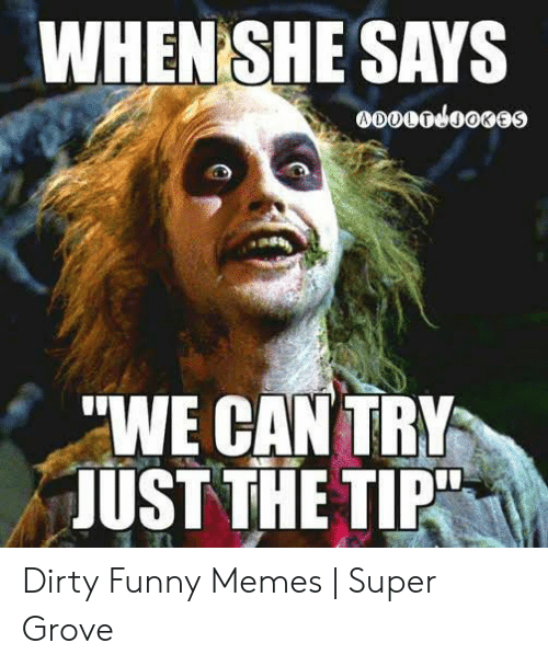 Dirty Funny Memes: WHENSHE SAYS  WE CAN TRY  JUST THE TIPT Dirty Funny Memes | Super Grove