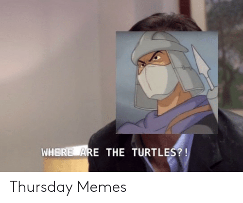Memes, Turtles, and The Turtles: WHERE ARE THE TURTLES?! Thursday Memes