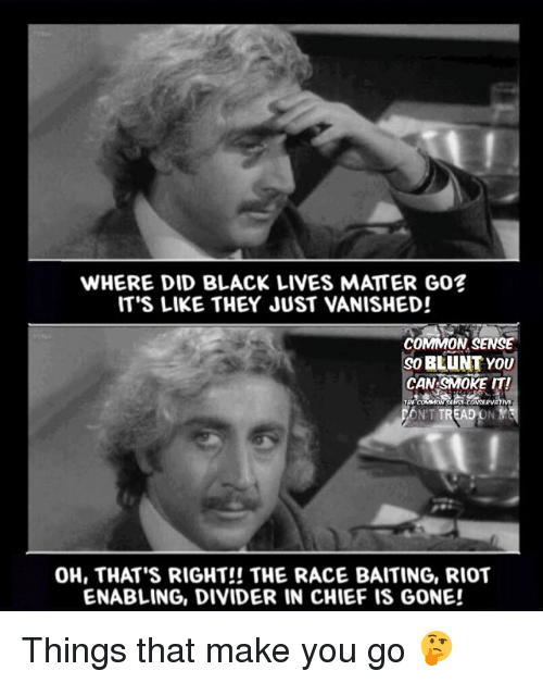 enabler: WHERE DID BLACK LIVES MATTER GO?  IT'S LIKE THEY JUST VANISHED!  COMMON SENSE  BLUNT YOU  CAN SMOKE IT!  TREADONYS  OH, THAT'S RIGHT!! THE RACE BAITING, RIOT  ENABLING, DIVIDER IN CHIEF IS GONE! Things that make you go 🤔