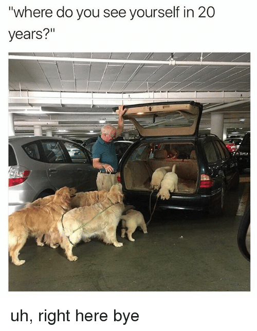"""Memes, 🤖, and You: """"where do you see yourself in 20  years?"""" uh, right here bye"""