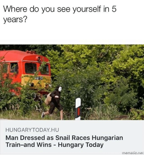 Today, Train, and Hungary: Where do you see yourself in 5  years?  HUNGARYTODAY.HU  Man Dressed as Snail Races Hungarian  Train-and Wins - Hungary Today  LAmematic.net