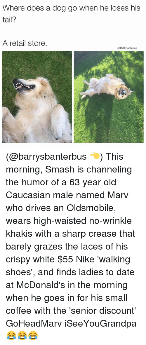 Grazing: Where does a dog go when he loses his  tail?  A retail store  @Drsmashlove (@barrysbanterbus 👈) This morning, Smash is channeling the humor of a 63 year old Caucasian male named Marv who drives an Oldsmobile, wears high-waisted no-wrinkle khakis with a sharp crease that barely grazes the laces of his crispy white $55 Nike 'walking shoes', and finds ladies to date at McDonald's in the morning when he goes in for his small coffee with the 'senior discount' GoHeadMarv iSeeYouGrandpa 😂😂😂