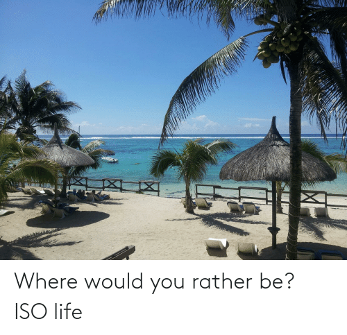Rather Be: Where would you rather be? ISO life