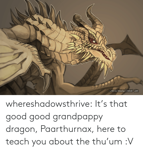 Tumblr, Blog, and Good: WHERESHADOWS THRIVE 2018 whereshadowsthrive:  It's that good good grandpappy dragon, Paarthurnax, here to teach you about the thu'um :V