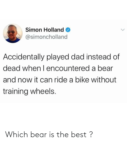 Best: Which bear is the best ?