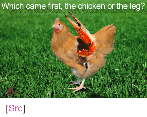 "top ten: Which came first, the chicken or the leg? <p>[<a href=""https://www.reddit.com/r/surrealmemes/comments/7yl37d/top_ten_facts_about_the_ostrich/"">Src</a>]</p>"
