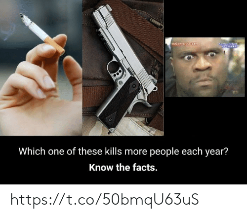 Facts, One, and More: Which one of these kills more people each year?  Know the facts. https://t.co/50bmqU63uS