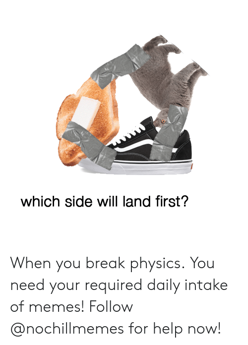 Memes, Break, and Help: which side will land first? When you break physics.You need your required daily intake of memes! Follow @nochillmemes for help now!