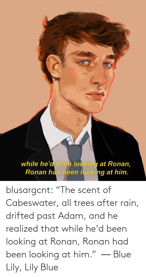 "Trees: while he'd been looking at Ronan,  Ronan had been looking at him. blusargcnt:  ""The scent of Cabeswater, all trees after rain, drifted past Adam, and he realized that while he'd been looking at Ronan, Ronan had been looking at him.""  ― Blue Lily, Lily Blue"