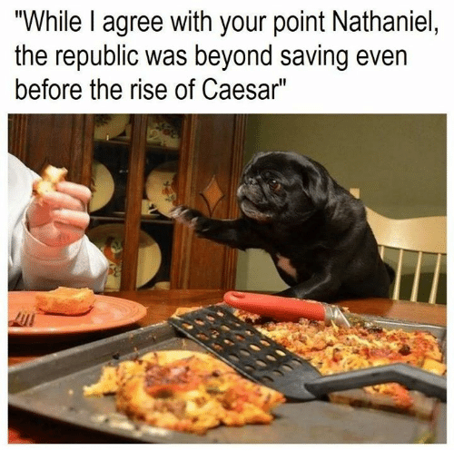 """Rough Roman, Republic, and Caesar: """"While I agree with your point Nathaniel,  the republic was beyond saving even  before the rise of Caesar"""""""