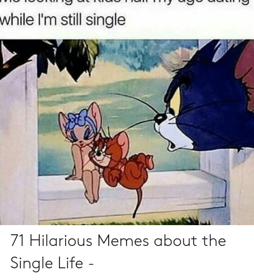 25 Best Memes About Funny Memes About Being Single