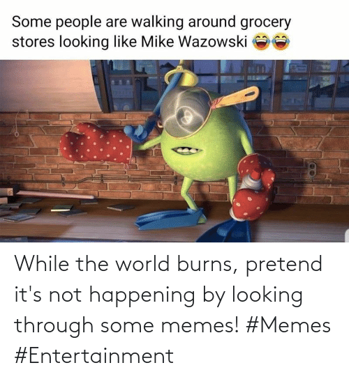 Not Happening: While the world burns, pretend it's not happening by looking through some memes! #Memes #Entertainment