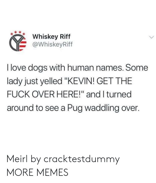 """Dank, Dogs, and Love: Whiskey Riff  @WhiskeyRiff  I love dogs with human names. Some  lady just yelled """"KEVIN! GET THE  FUCK OVER HERE!"""" and I turned  around to see a Pug waddling over. Meirl by cracktestdummy MORE MEMES"""