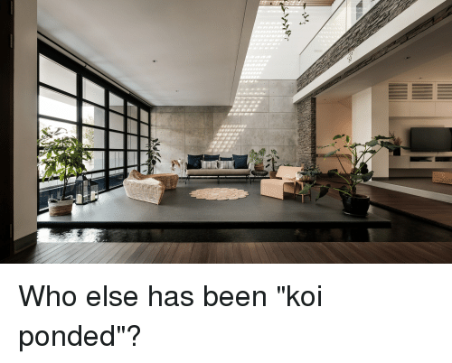 "The Office, Been, and Who: Who else has been ""koi ponded""?"