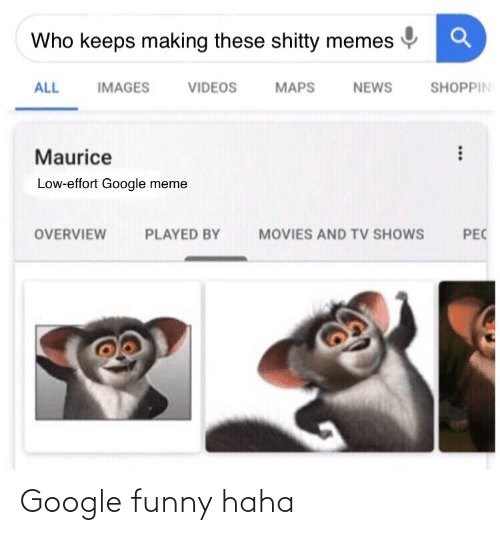 Google Meme: Who keeps making these shitty memes  SHOPPIN  MAPS  ALL  IMAGES  VIDEOS  NEWS  Maurice  Low-effort Google meme  OVERVIEW  PLAYED BY  MOVIES AND TV SHOWS  PEC Google funny haha