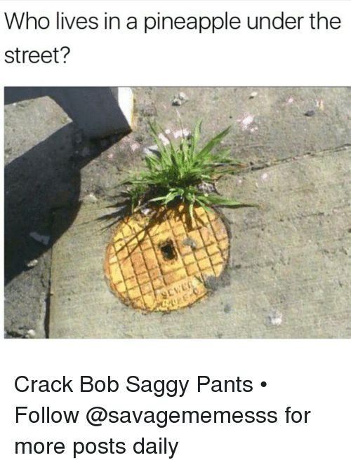 Pineappl: Who lives in a pineapple under the  Street? Crack Bob Saggy Pants • ➫➫ Follow @savagememesss for more posts daily