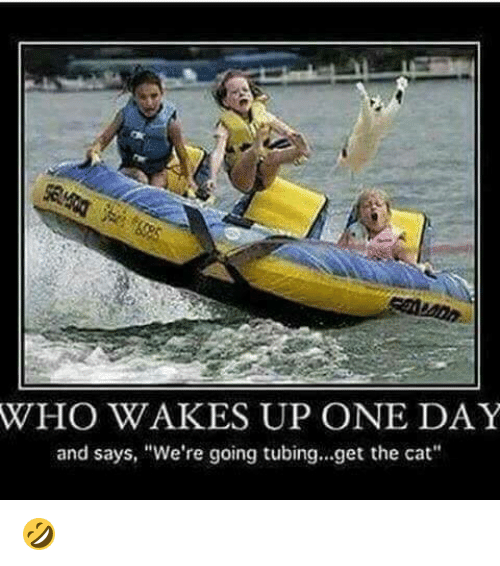 """tubing: WHO WAKES UP ONE DAY  and says, """"We're going tubing...get the cat"""" 🤣"""