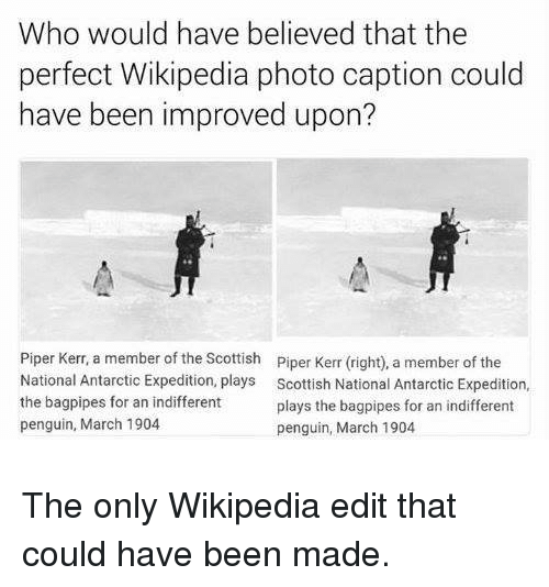 Kerr: Who would have believed that the  perfect Wikipedia photo caption could  have been improved upon?  Piper Kerr, a member of the Scottish  National Antarctic Expedition, plays  the bagpipes for an indifferent  penguin, March 1904  Piper Kerr (right), a member of the  Scottish National Antarctic Expedition,  plays the bagpipes for an indifferent  penguin, March 1904 The only Wikipedia edit that could have been made.