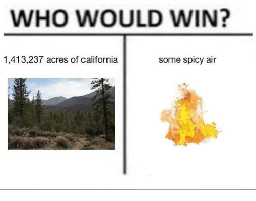 California, Spicy, and Air: WHO WOULD WIN?  1,413,237 acres of california  some spicy air