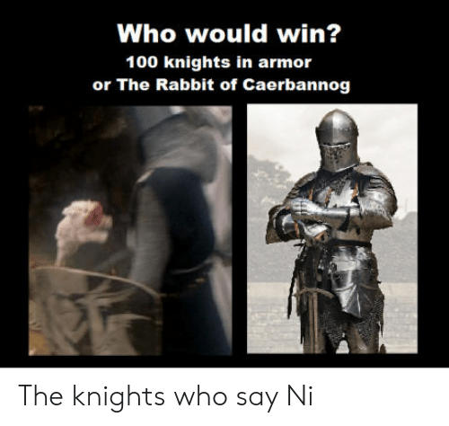 Anaconda, Rabbit, and Who: Who would win?  100 knights in armor  or The Rabbit of Caerbannog The knights who say Ni