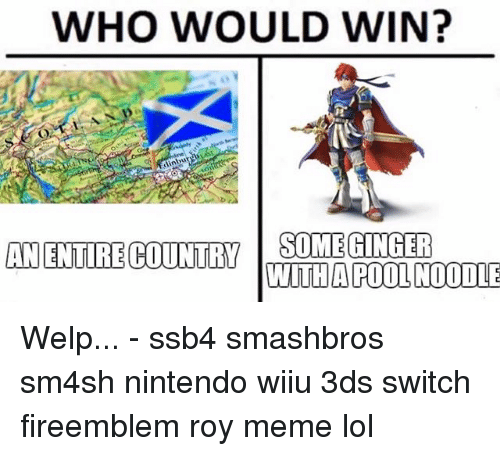 Lol, Meme, and Memes: WHO WOULD WIN?  ANENTIRE COUNY OMEGINGER  WITHA POOL NOODLE Welp... - ssb4 smashbros sm4sh nintendo wiiu 3ds switch fireemblem roy meme lol